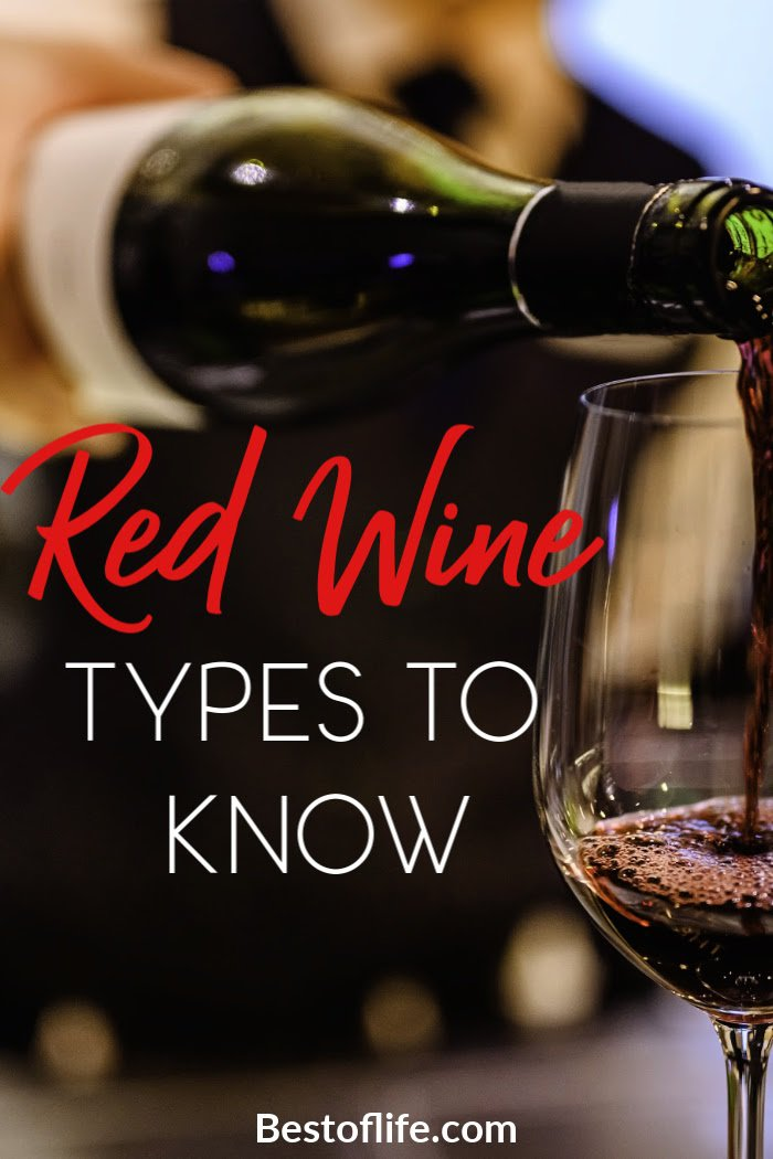 The vast array of types of red wine available today can be overwhelming. Use these tips to make sure you get the best red wine for your tastes! #wine #whino #redwine | Best Types of Red Wine | Best Red Wine | What Red Wine is Better via @thebestoflife