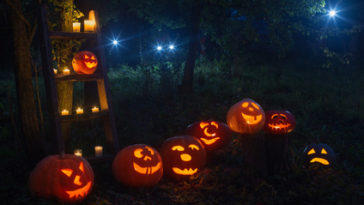 Halloween Pumpkin Patches