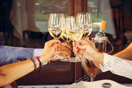 Best Wine Bars in San Diego Travel