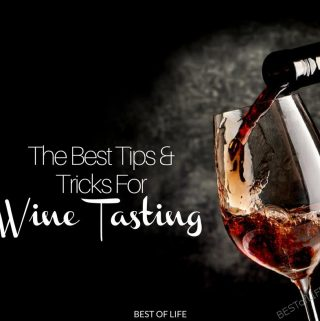 You don't have to be a wine connoisseur to fit in at wine parties and wine tastings. Use these wine tasting tips to look like a pro. Wine Tasting Tips   Tips for Wine Tasting   What to do When Wine Tasting   What is Wine Tasting   How to go Wine Tasting
