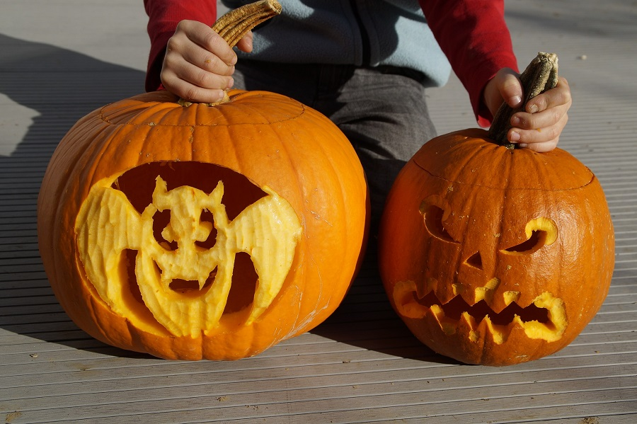 Pumpkin Carving Ideas for Halloween Little Child Putting Two pumpkins Down on a Patio