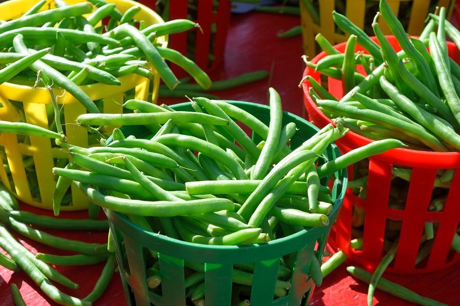 Green Bean Casserole Recipes Fresh Green Beans in Baskets