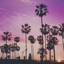 There are many tourist things to do in LA that gives the city life, gives the locals things to do, and make visitors feel like they're center stage. Best Things to do in LA   Best Tourist Activities in LA   What to do in LA #LA #travel #thingstodo #LAfun