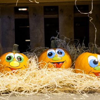 Use a few DIY no carve pumpkin decorating ideas to keep the knives and sharp tools out of reach of your children while they still get to enjoy the creatively spooky fun of Halloween. Pumpkin Decorating Ideas for Kids | No Carve Pumpkin Ideas | Halloween Crafts for Kids | DIY Halloween Décor Ideas