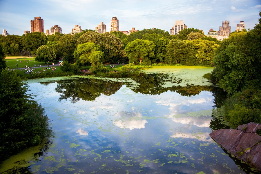 Make the most of your trip to New York City by filling your day with the best things to do in Central Park. Where is Central Park | How to Visit Central Park | What is Inside Central Park | How Big is Central Park | Activities in Central Park | Central Park Events