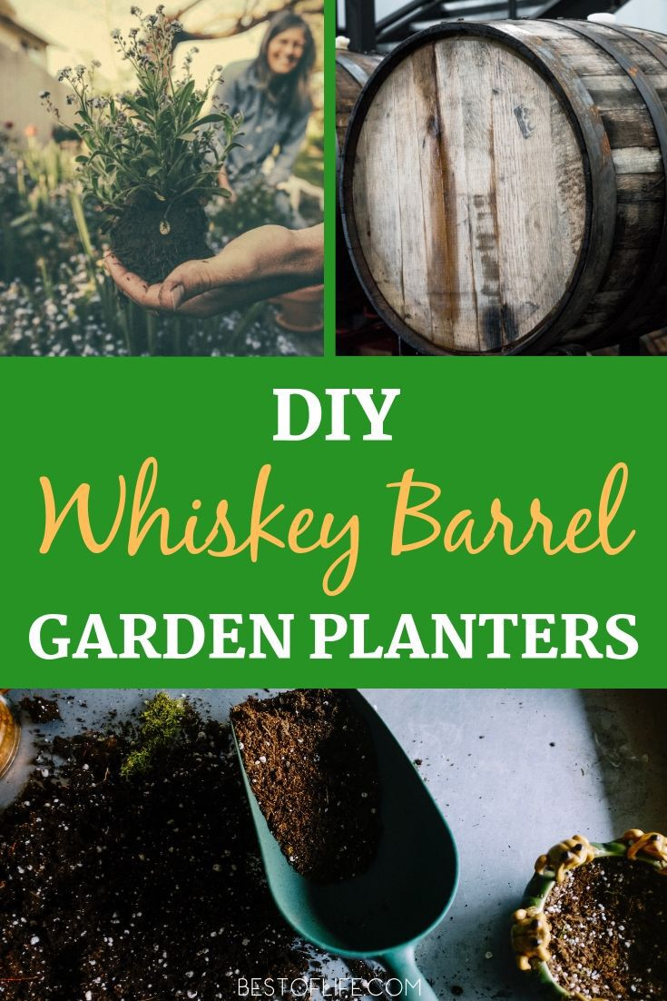 Take your DIY craftiness to a whole new and exciting level with DIY whiskey barrel planter ideas for your front or back yard gardens. Tips for Gardens | Garden Building Tips | DIY Garden Crafts | Crafts for Gardens | DIY Home Decor | DIY Landscape Ideas #garden #DIY via @thebestoflife