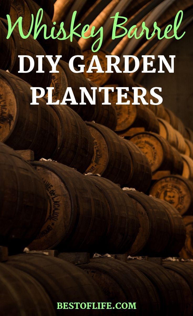 Take your DIY craftiness to a whole new and exciting level with DIY whiskey barrel planter ideas for your front or back yard gardens. Tips for Gardens | Garden Building Tips | DIY Garden Crafts | Crafts for Gardens | DIY Home Decor | DIY Landscape Ideas #garden #DIY