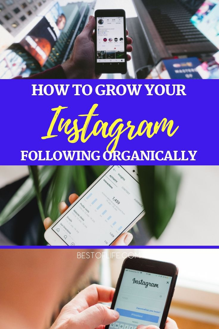Learn how to grow your Instagram following organically and start sharing your interesting moments with tens of thousands of people. Social Media Tips | Tips for Social Media | Instagram Tips | Tips for Instagram | Organic Growth Tips | Tips to Grow Organically #instagram #tips via @thebestoflife