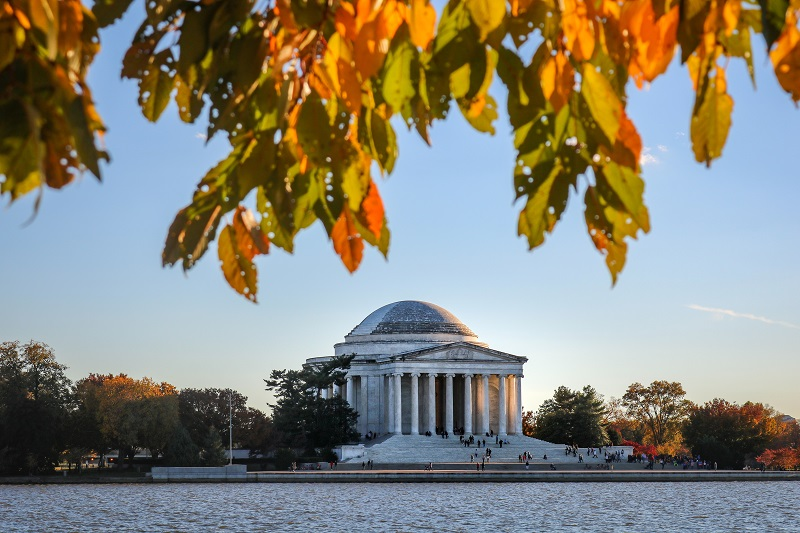 You can take a trip and discover so much by just attending as many of the best things to do in Washington DC as you can find. Free Things to do in Washington DC | Historical Things to so in Washington DC | Expensive Things to do in Washington DC | Washington DC Attractions | Washington DC Museums