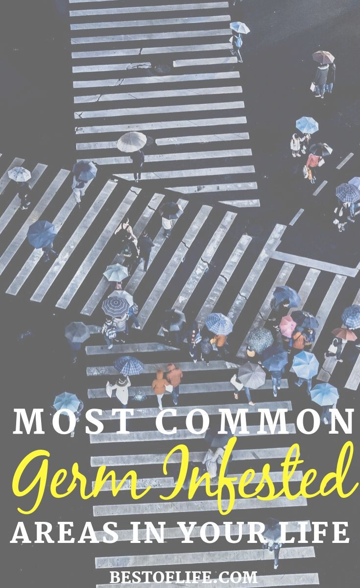 Some of the most common germ infested areas in our lives are controllable but some are not. Knowing where they are will help though. How to Stay Healthy | How to Avoid Germs | Life Hacks | Tips for Cold Season | Tips for Flu Season | Health Tips #health #lifestyle
