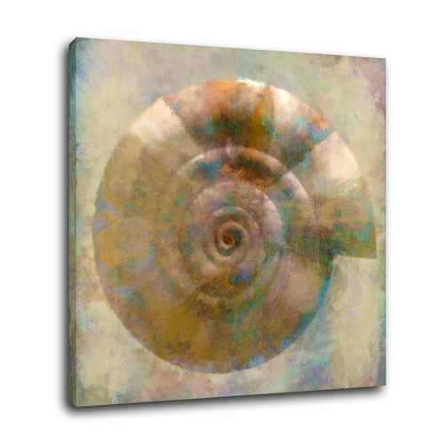 Bring the beauty of nature into any space you'd like with this beautiful sea shell art that adds natural beauty to your home decor scheme. Seashell Framed Art | Vintage Shell Art | Seashell Art Painting | Seashell Drawing | Seashell Art on Canvas | Ocean Theme Decor Ideas | Beach House Decor Ideas #seashell #wallart via @thebestoflife