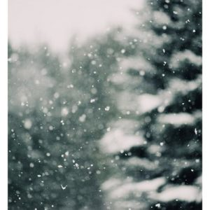 What is a winter daydream like for you? Most people dream of snow-capped mountains and white and green trees. Capture that winter magic in your home decor.