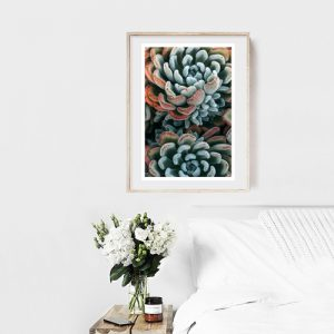 Add a splash of autumn to your home decor with this autumn succulent fine art photograph that signifies change in your life and in the world around you.