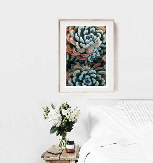 Add a splash of autumn to your home decor with this autumn succulent fine art photograph that signifies change in your life and in the world around you. Autumn Wall Art | Autumn Art Print | Succulent Wall Art | Succulent Artworks | Succulent Wall Art Picture #succulents #art