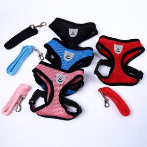 Keep your dog safe and cool with a mesh adjustable dog harness that comes in different colors and matching leashes. Mesh Dog Harness | Soft Mesh Dog Harness | Cool Mesh Dog Harness | Adjustable Mesh Dog Harness | Safe Dog Harness | Mesh Dog Harness with Velcro | Adjustable Harness for Dogs #harness #pets