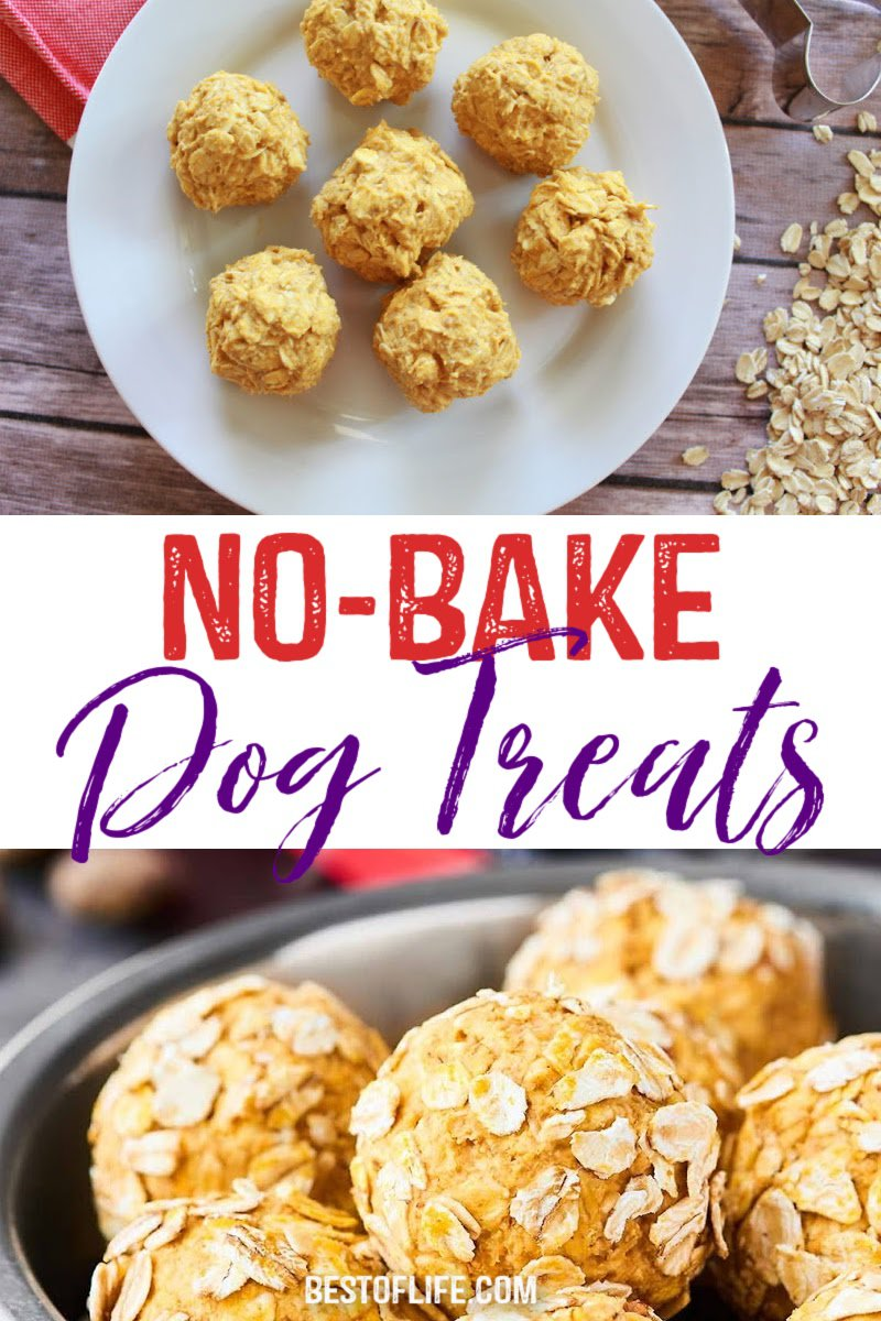 You can save a lot of money on dog treats when you learn how to make these healthy no bake dog treats right at home for your dog or cat. No Bake Dog Treats Without Peanut Butter | No Bake Dog Treats with Coconut Oil | No Bake Banana Dog Treats | 2 Ingredient Dog Treats | Dog Treat Recipes | Homemade Dog Treats | Cheap Dog Treats | Tips for Dog Owners #dogs #treats via @thebestoflife