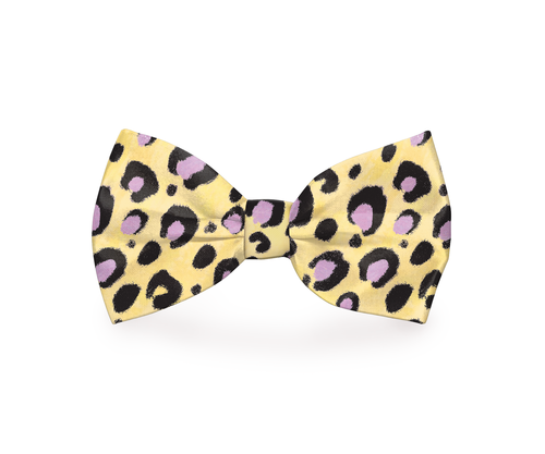 Give your dog a few stylish spots with a pink cheetah yellow dog bow tie that attaches easily to any collar your dog wants to pair it with. Cheetah Print Bow Tie | Cheetah Tie for Dogs | Cheetah Print Bow Tie for Pets | Pink Cheetah Spot Tie | Accessories for Pets | Fashionable Accessories for Pets #petowners #fashion