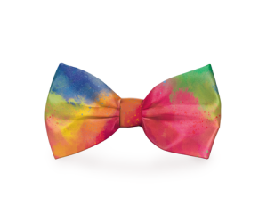 Your dog is beautiful, cute, adorable, and would look even more so with a touch of color in the form of a tie-dye dog bow tie. Rainbow Bow Tie Puppy Dog Collar | Dog Bow Tie Rainbow | Colorful Bow Ties for Dogs | Stylish Dog Tips | Pet Accessories | Pet Bow Tie | Bow Ties for Pets | Rainbow Ties for Pets #rainbow #pets