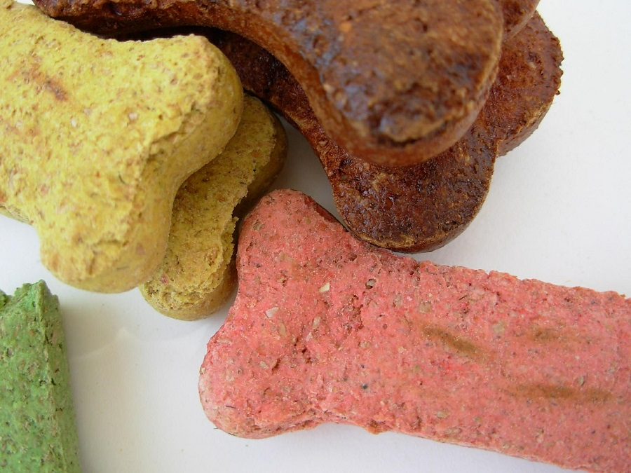 No Bake Dog Treats Close Up of Bone Shaped Dog Treats