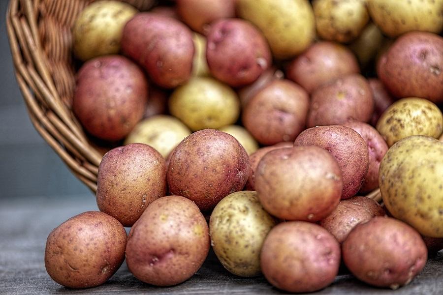 Instant Pot German Potato Salad Recipes Potatoes