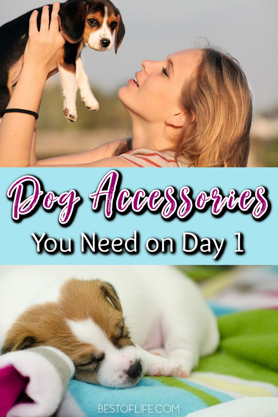 The best dog accessories you need on day 1 will make the transition easier for you and for your new dog as they join your family. Luxury Dog Accessories | Cute Dog Accessories | Dog Accessories Online | Must-Have Dog Accessories | Accessories for Pet Owners | Chew Toys for Puppies | Leashes for Puppies | Comfortable Dog Beds #dogs #petlovers via @thebestoflife