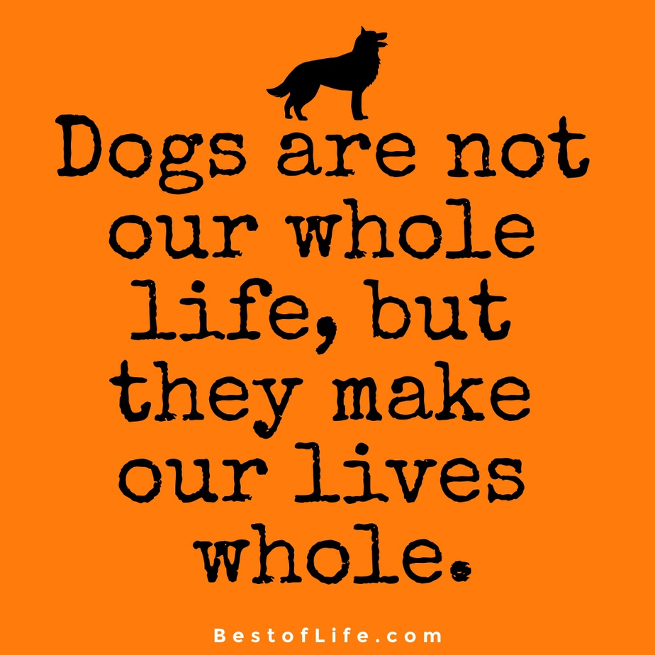 Sweet Dog Quotes About Love Life Dogs are not our whole life, but they make our lives whole.