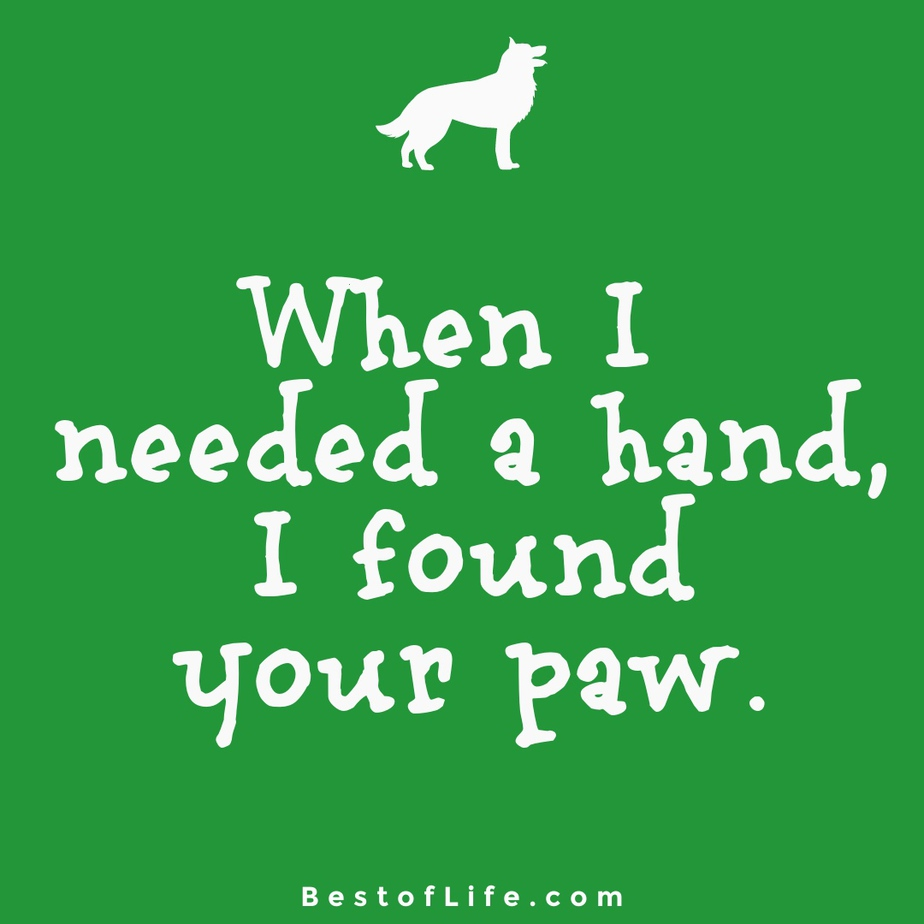Sweet Dog Quotes About Love Paw When I needed a hand, I found your paw.