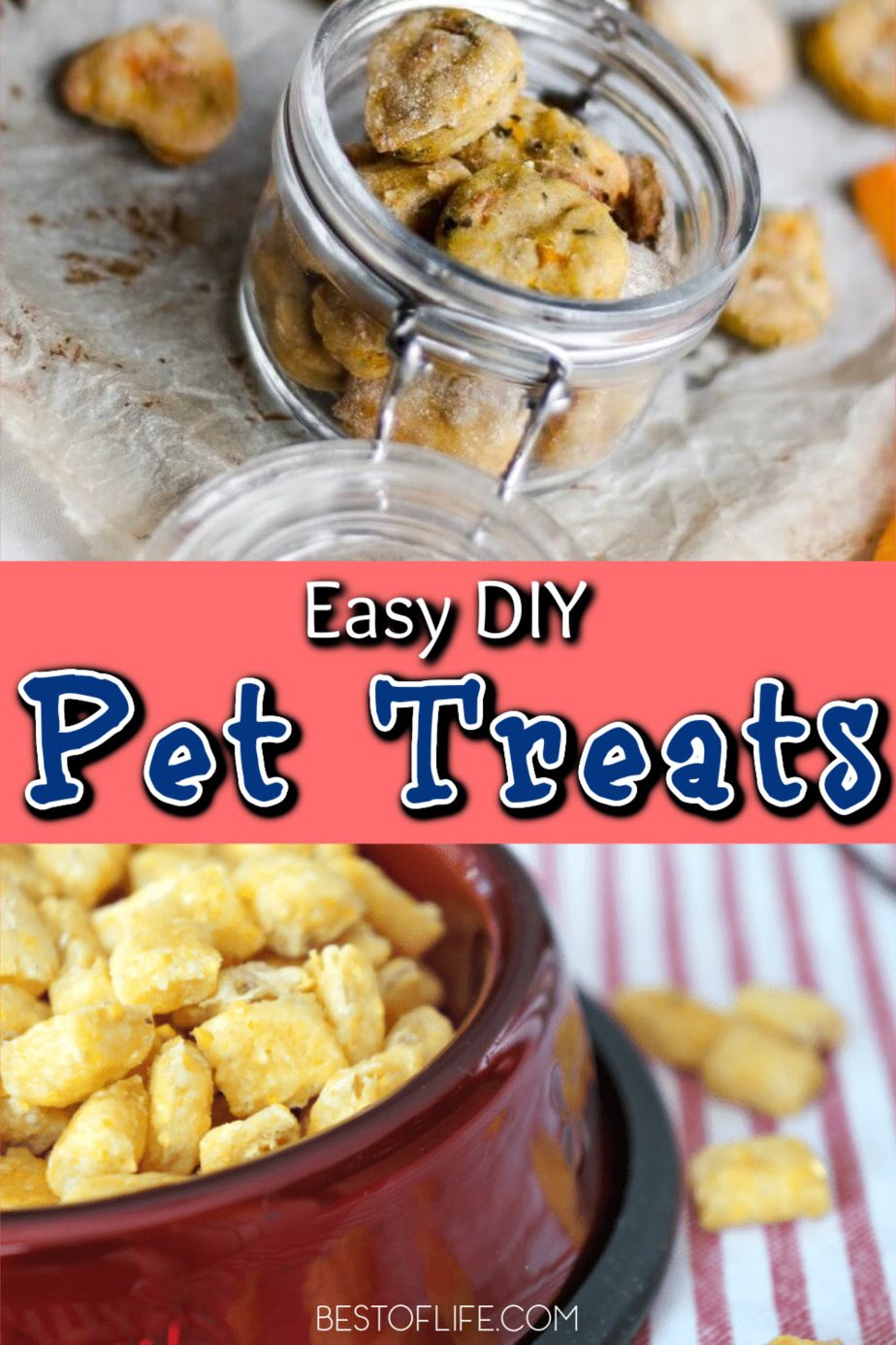 DIY pet treats are a great way to keep track of what you are feeding your pet, while also saving money as a pet owner. Pet Treats Recipes | Homemade Pet Treat Ideas | Tips for Packaging Pet Treats | Pet Treat Storage Ideas | DIY Pet Treat Jars | DIY Pet Food | Tips for Pet Owners | Ideas for Owning Pets #pets #DIY via @thebestoflife