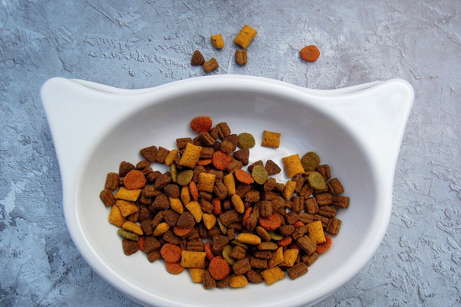 Pet Food Storage Ideas for Kitchens Pet Food in a Food Bowl