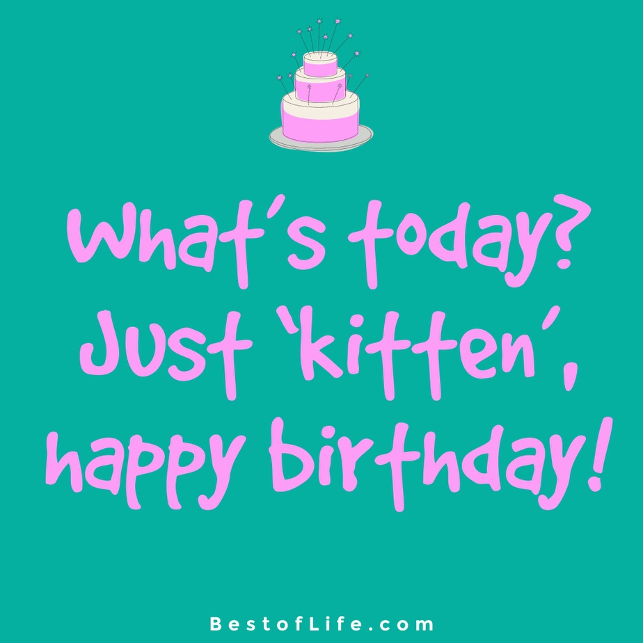 Cat Quotes for Birthdays What's today? Just 'kitten', happy birthday!