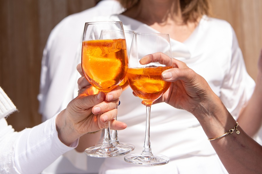 Funny Drinking Toasts Women Clinking Glasses of Wine Together