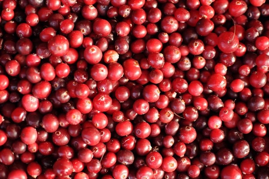 Instant Pot Cranberry Sauce Recipes A Blanket of Cranberries