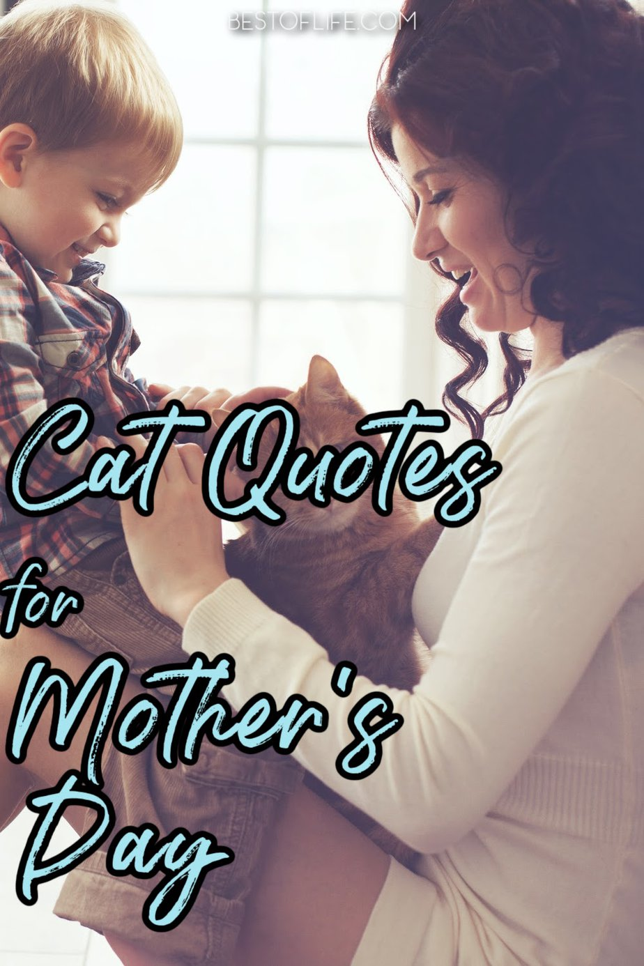 Cat quotes for Mother's Day can be used in all sorts of ways with the most important one being to express your love and appreciation. Mother's Day Quotes from Daughter | Mother's Day Quotes for Everyone | Funny Quotes with Cats | Mother's Day Quotes from Cats | Quotes for Cat People | Cat People Quotes #quotes #cats via @thebestoflife