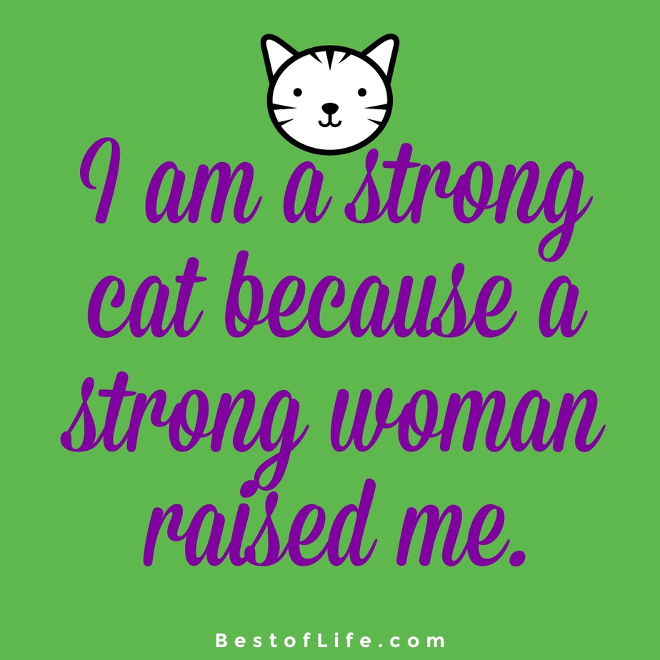 Cat Quotes for Mother's Day I am a strong cat because a strong woman raised me.